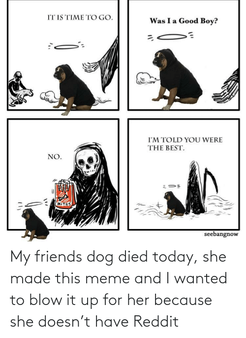 For Her: My friends dog died today, she made this meme and I wanted to blow it up for her because she doesn't have Reddit
