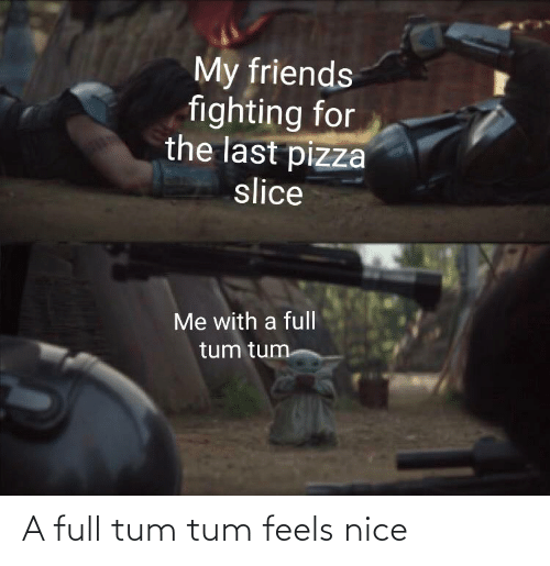 Friends, Pizza, and Reddit: My friends  fighting for  the last pizza  slice  Me with a full  tum tum A full tum tum feels nice
