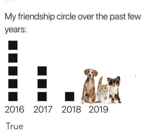 past-few-years: My friendship circle over the past few  years:  2016 2017 2018 2019 True