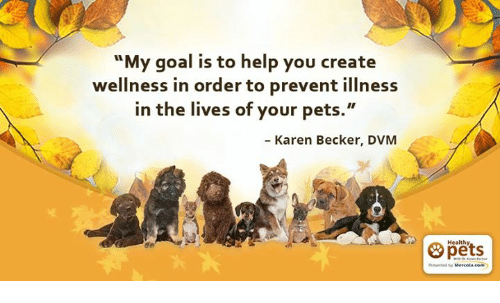 "dvm: ""My goal is to help you create  wellness in order to prevent illness  in the lives of your pets.""  Karen Becker, DVM  Healthy,"