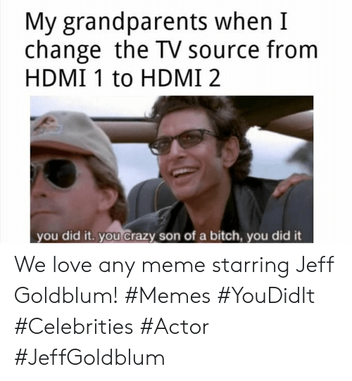 Grandparents: My grandparents when I  change the TV source from  HDMI 1 to HDMI 2  you did it. you crazy son of a bitch, you did it We love any meme starring Jeff Goldblum! #Memes #YouDidIt #Celebrities #Actor #JeffGoldblum