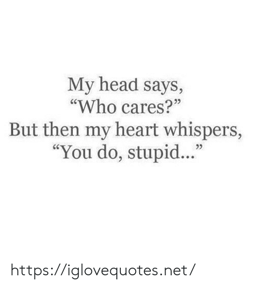"Head, Heart, and Net: My head says,  ""Who cares?""  But then my heart whispers,  ""You do, stupi. https://iglovequotes.net/"