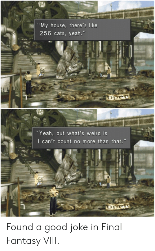 "final fantasy viii: ""My house, there's like  256 cats, yeah.""  OM  ""Yeah, but what's weird is  I can't count no more than that."" Found a good joke in Final Fantasy VIII."