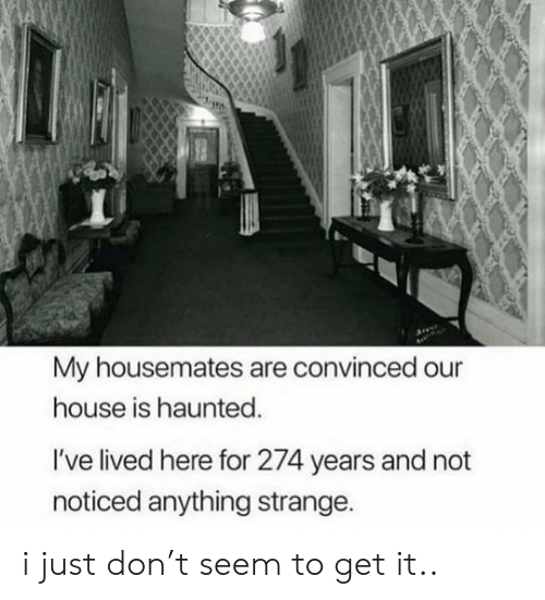House, Don, and Haunted: My housemates are convinced our  house is haunted.  I've lived here for 274 years and not  noticed anything strange. i just don't seem to get it..