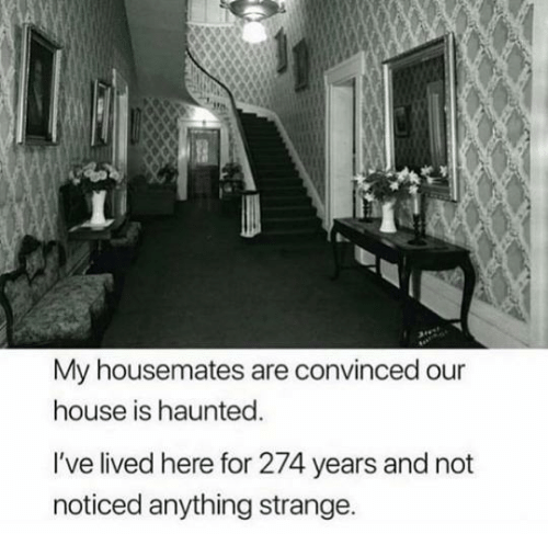 haunted: My housemates are convinced our  house is haunted.  I've lived here for 274 years and not  noticed anything strange.