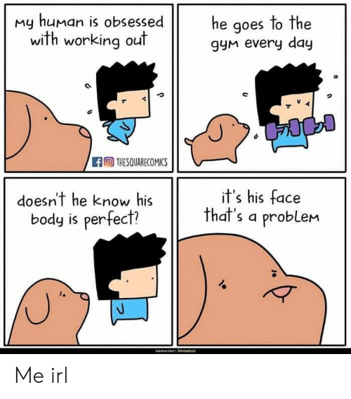 My Human: my human is obsessede aoes to the  he goes lo The  with working out  gyM every day  THESQUARECOMICS  doesn't he know his  body is perfect?  it's his face  that's a problem Me irl