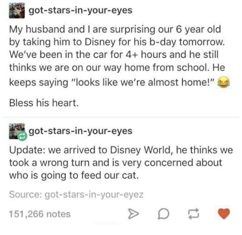 Bless His Heart: My husband and l are surprising our 6 year old  by taking him to Disney for his b-day tomorrow.  We've been in the car for 4+ hours and he still  thinks we are on our way home from school. He  Bless his heart.  got-stars-in-your-eyes  Update: we arrived to Disney World, he thinks we  took a wrong turn and is very concerned about  who is going to feed our cat.  Source: got-stars-in-your-eyez  151,266 notes
