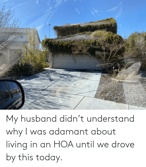 understand: My husband didn't understand why I was adamant about living in an HOA until we drove by this today.