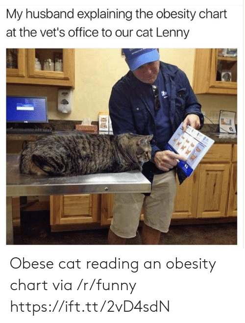 Lenny: My husband explaining the obesity chart  at the vet's office to our cat Lenny Obese cat reading an obesity chart via /r/funny https://ift.tt/2vD4sdN
