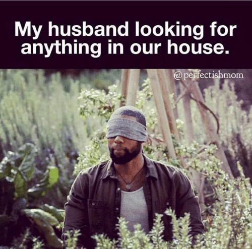 Dank, House, and Husband: My husband looking for  anything in our house.  @perfectishmom