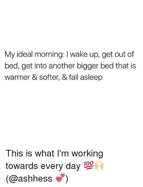 Fall, Memes, and 🤖: My ideal morning: I wake up, get out of  bed, get into another bigger bed that is  warmer & softer, & fall asleep This is what I'm working towards every day 💯🙌🏼(@ashhess 💕)