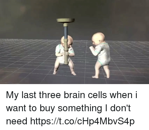 Memes, Brain, and 🤖: My last three brain cells when i want to buy something I don't need https://t.co/cHp4MbvS4p