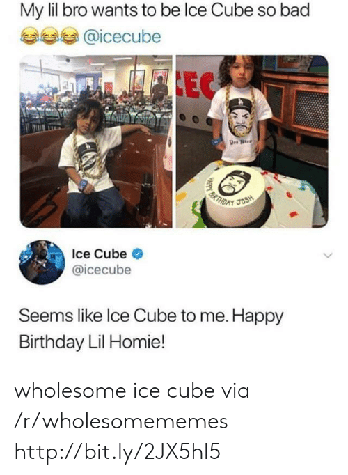 Ice Cube: My lil bro wants to be lce Cube so bad  @icecube  EC  BRTH  JOSH  D  Ice Cube  @icecube  Seems like Ice Cube to me. Happy  Birthday Lil Homie!  HAppy B wholesome ice cube via /r/wholesomememes http://bit.ly/2JX5hI5