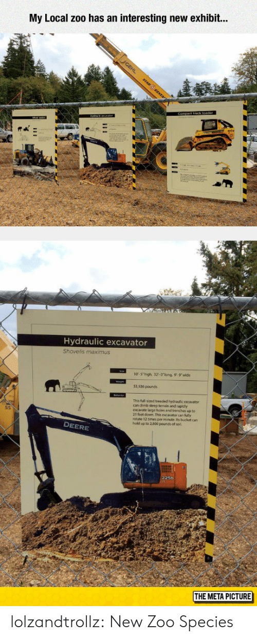 Maximus, Tumblr, and Holes: My Local zoo has an interesting new exhibit..  Hydraulic excavator  Shovelis maximus  10-5 high, 32-0long, 9-9 wide  53,936 pounds  This full-sized treaded hydraulic excavator  can dlimb steep terrain and rapidy  excavate large holes and trenches up to  21 feet down. This excavator can fully  rotate 12 times per minute. Its bucket can  hold up to 2.800 pounds of soil.  S5  DEERE  225D  THE META PICTURE lolzandtrollz:  New Zoo Species