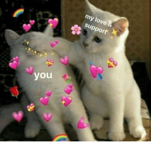 Love Support: my love  support  you