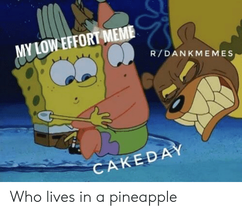Meme, Pineapple, and Who: MY LOW EFFORT MEME  R/DANKMEMES  CAKEDAY Who lives in a pineapple