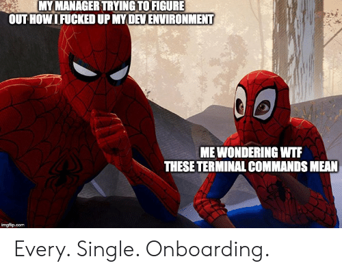 Wtf, Mean, and Single: MY MANAGER TRYING TO FIGURE  OUTHOWIFUCKED UP MYDEVENVIRONMENT  MEWONDERING WTF  THESE TERMINAL COMMANDS MEAN  imgflip.com Every. Single. Onboarding.