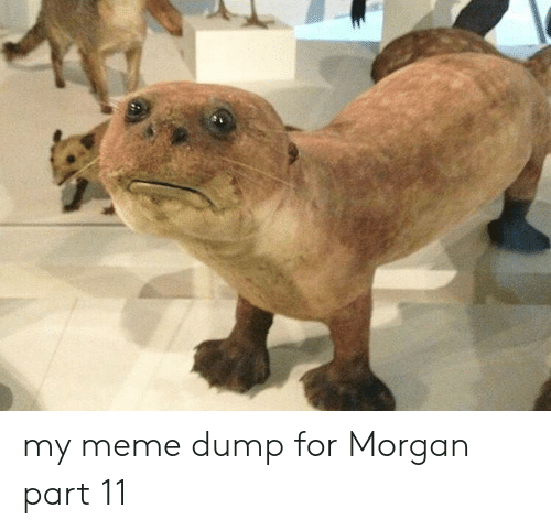 Meme, Morgan, and For: my meme dump for Morgan part 11