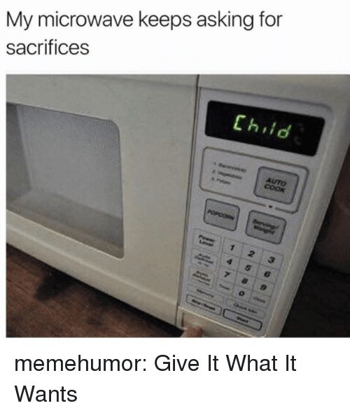 Tumblr, Blog, and Http: My microwave keeps asking for  sacrifices  Chiid  AUTO memehumor:  Give It What It Wants