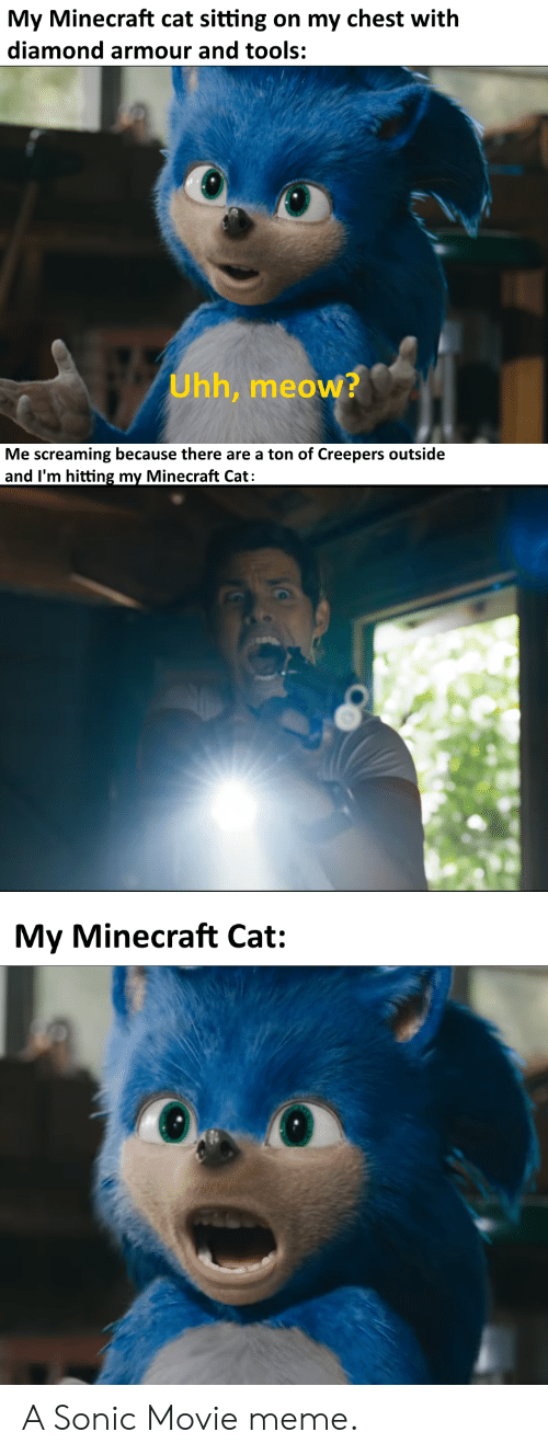 Movie Meme: My Minecraft cat sitting on my chest with  diamond armour and tools:  Uhh, meow?  Me screaming because there are a ton of Creepers outside  and I'm hitting my Minecraft Cat:  My Minecraft Cat: A Sonic Movie meme.