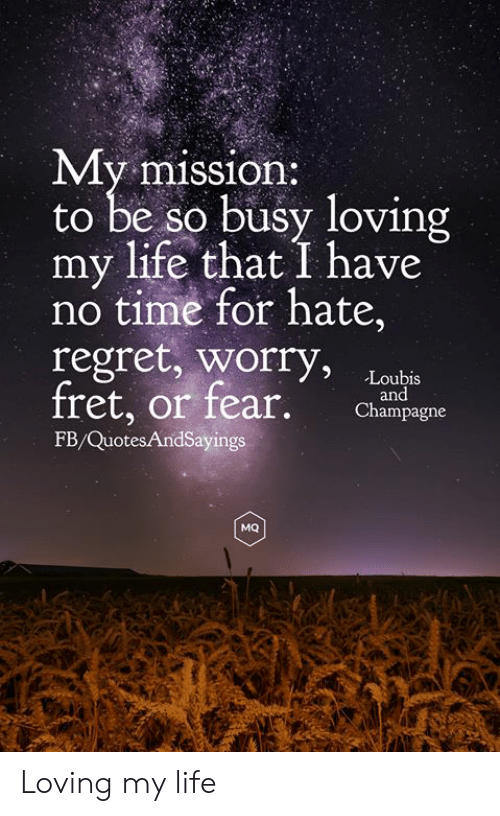 no time: My mission:  to be so busy loving  my life that I have  no time for hate,  regret, worry,  fret, or fear.  Loubis  and  Champagne  FB/QuotesAndSayings  MQ Loving my life