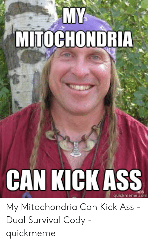 dual survival: MY  MITOCHONDRIA  CAN KICK ASS  HDS  quickmeme.com My Mitochondria Can Kick Ass - Dual Survival Cody - quickmeme