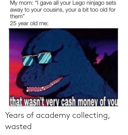 """Lego, Money, and Reddit: My mom: """"I gave all your Lego ninjago sets  away to your cousins, your a bit too old for  them""""  25 year old me:  that wasn't very cash money of you Years of academy collecting, wasted"""