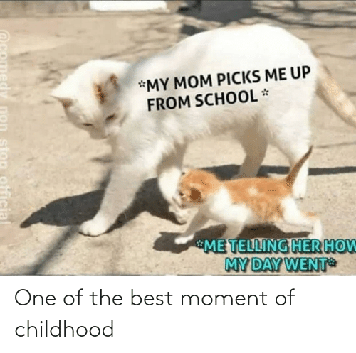 moment: *MY MOM PICKS ME UP  FROM SCHOOL *  ME TELLING HER HOW  MY DAY WENT  stop official One of the best moment of childhood