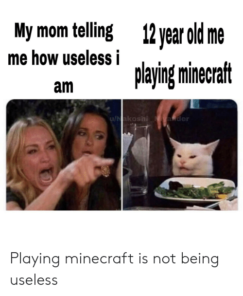 Minecraft, Old, and Mom: My mom telling  12 year old me  me how useless i  playing minecraft  am  u/Nakoshi Niyander Playing minecraft is not being useless