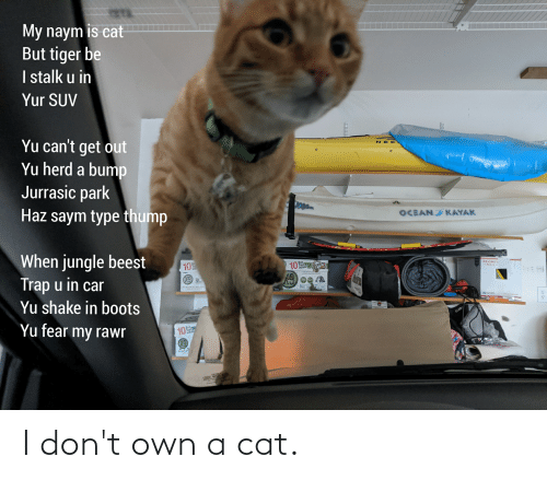 Kayak: My naym is cat  But tiger be  I stalk u in  Yur SUV  Yu can't get out  Yu herd a bump  N EC  Jurrasic park  Haz saym type thump  OCEAN KAYAK  When jungle beest  Trap u in car  Yu shake in boots  PRIORITY  MAIL  Вох  Tops  inšide  10  10  Yu fear my rawr  Вох.  Tops  inside  10 I don't own a cat.