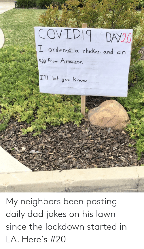 Dad Jokes: My neighbors been posting daily dad jokes on his lawn since the lockdown started in LA. Here's #20