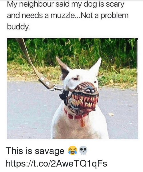 Not A Problem: My neighbour said my dog is scary  and needs a muzzle...Not a problem  buddy This is savage 😂💀 https://t.co/2AweTQ1qFs