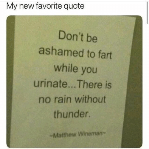 Dank, Rain, and 🤖: My new favorite quote  Don't be  ashamed to fart  while you  urinate... There is  no rain without  thunder.  -Matthew Wineman-