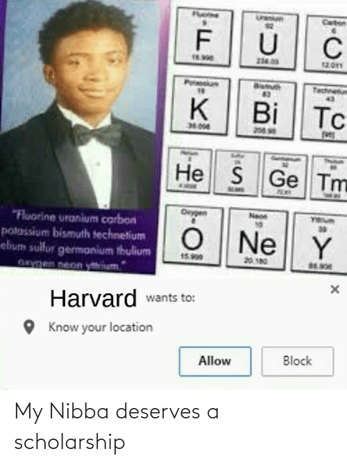Deserves: My Nibba deserves a scholarship