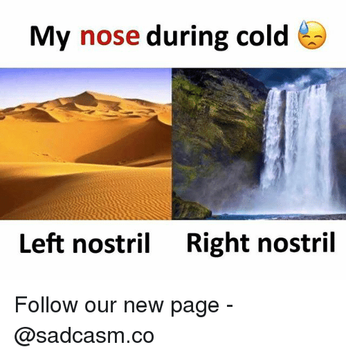 Memes, Cold, and 🤖: My nose during cold  Left nostril  Right nostril Follow our new page - @sadcasm.co