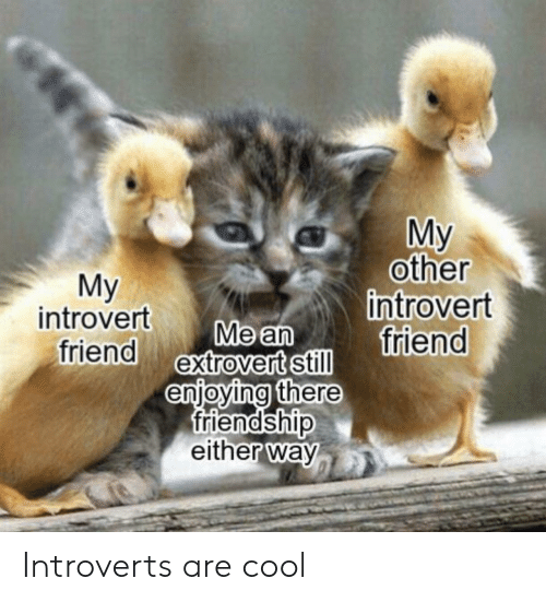 Introvert, Cool, and Friendship: My  other  introvert  friend  Мy  introvert  friend extrovert still  Me an  enjoying there  friendship  either way Introverts are cool