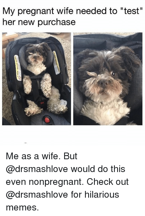 """Pregnant Wife: My pregnant wife needed to """"test""""  her new purchase Me as a wife. But @drsmashlove would do this even nonpregnant. Check out @drsmashlove for hilarious memes."""