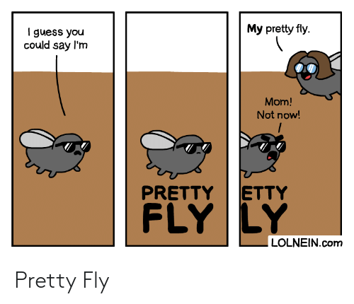 I Guess You Could Say: My pretty fly  I guess you  could say l'm  Mom!  Not now!  ETTY  PRETTY  FLY LY  LOLNEIN.com Pretty Fly