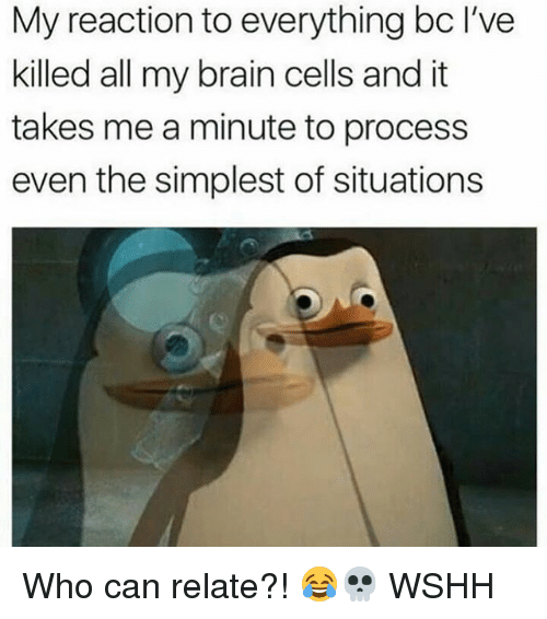 Memes, Wshh, and Brain: My reaction to everything bc I've  killed all my brain cells and it  takes me a minute to process  even the simplest of situations Who can relate?! 😂💀 WSHH