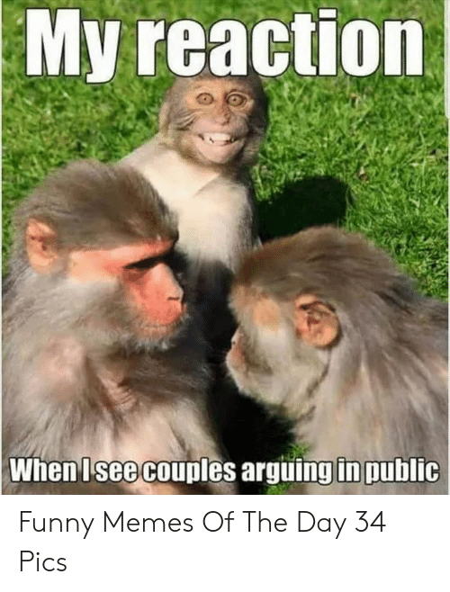 couples: My reaction  When Isee couples arguing in public Funny Memes Of The Day 34 Pics