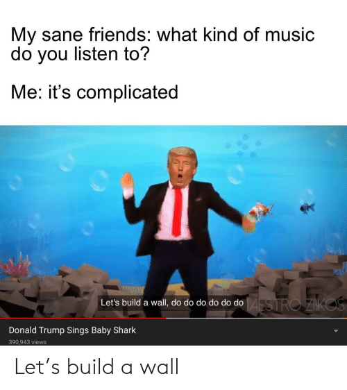 Donald Trump, Friends, and Music: My sane friends: what kind of music  do you listen to?  Me: it's complicated  AESTRO ZIKOS  Let's build a wall, do do do do do do  Donald Trump Sings Baby Shark  390,943 views Let's build a wall
