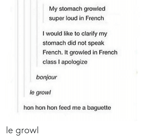 growl: My stomach growled  super loud in French  I would like to clarify my  stomach did not speak  French. It growled in French  class I apologize  bonjour  le grow  hon hon hon feed me a baguette le growl