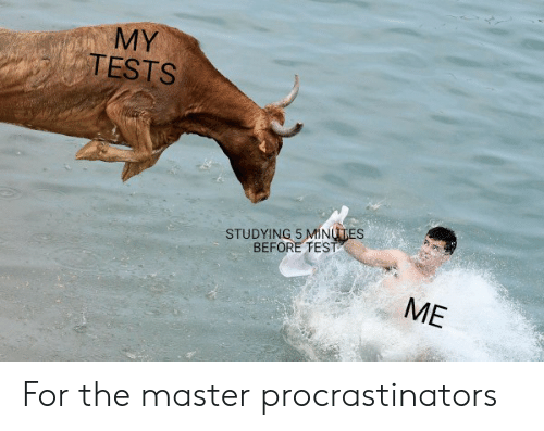 Dank Memes, The Master, and Master: MY  TESTS  STUDYING 5 MINUTES  BEFORE FEST  ME For the master procrastinators