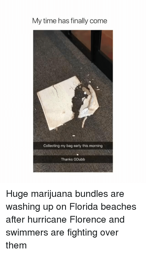 Memes, Florida, and Hurricane: My time has finally come  Collecting my bag early this morning  Thanks GDubb Huge marijuana bundles are washing up on Florida beaches after hurricane Florence and swimmers are fighting over them