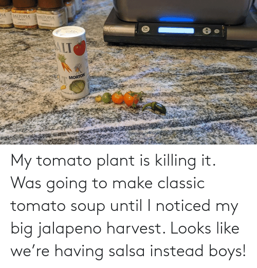 Going To: My tomato plant is killing it. Was going to make classic tomato soup until I noticed my big jalapeno harvest. Looks like we're having salsa instead boys!