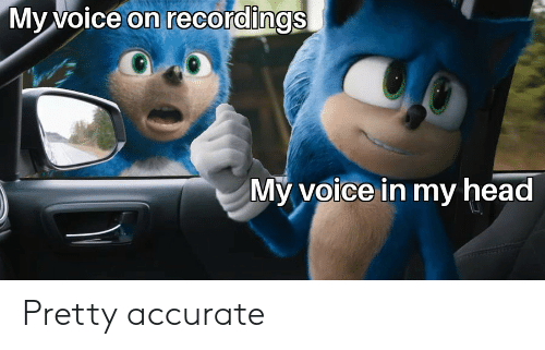 Head, Voice, and Voice in My Head: My voice on recordings  My voice in my head Pretty accurate