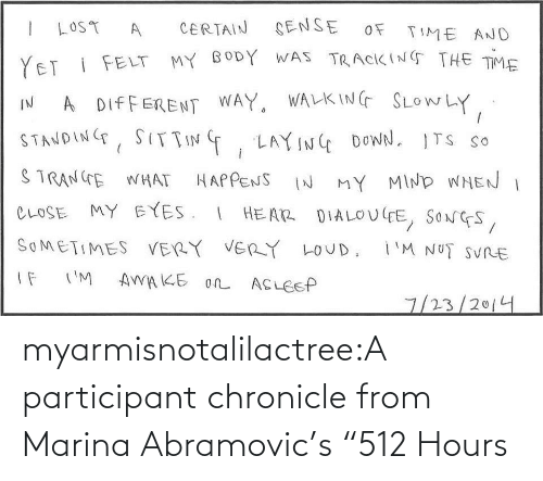 "Participant: myarmisnotalilactree:A participant chronicle from Marina Abramovic's ""512 Hours"
