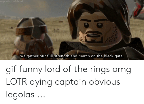 Funny Lord Of The Rings: mycatismyfriend  We gather our full strength and march on the black gate. gif funny lord of the rings omg LOTR dying captain obvious legolas ...
