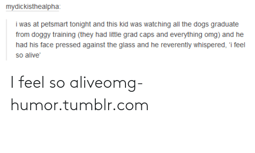 All The Dogs: mydickisthealpha:  i was at petsmart tonight and this kid was watching all the dogs graduate  from doggy training (they had little grad caps and everything omg) and he  had his face pressed against the glass and he reverently whispered, 'i feel  so alive' I feel so aliveomg-humor.tumblr.com