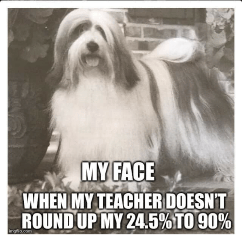 round up: MYFACE  WHEN MY TEACHER DOESNT  ROUND UP MY 24.5%TO 90%  imgflip.com